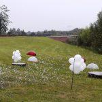Seifenblasen Lichterfest Elbauenpark